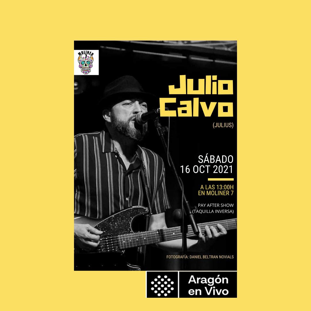 Julio-calvo-moliner7-zaragoza
