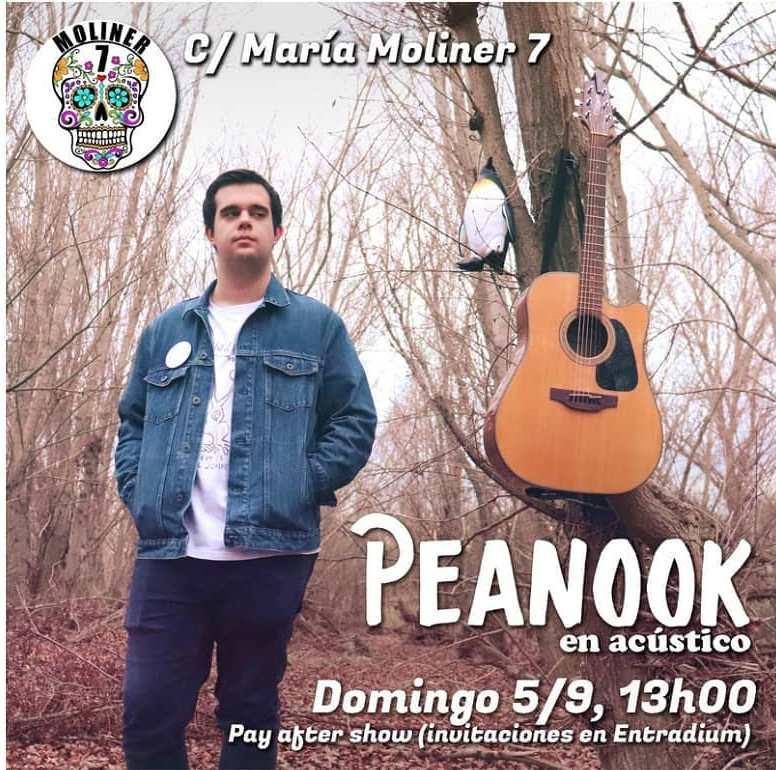 Peanook-Moliner-7-Zaragoza
